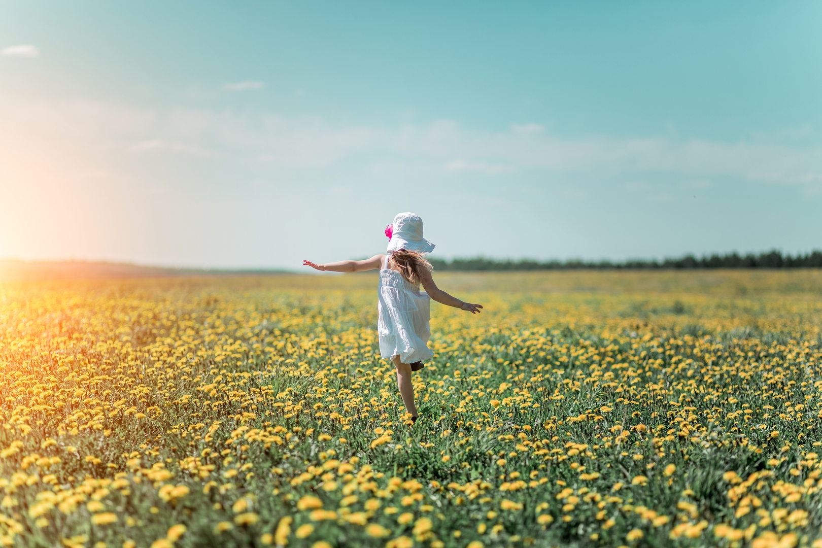 Little girl in white hat and white dress in a field of flowers in the summer.