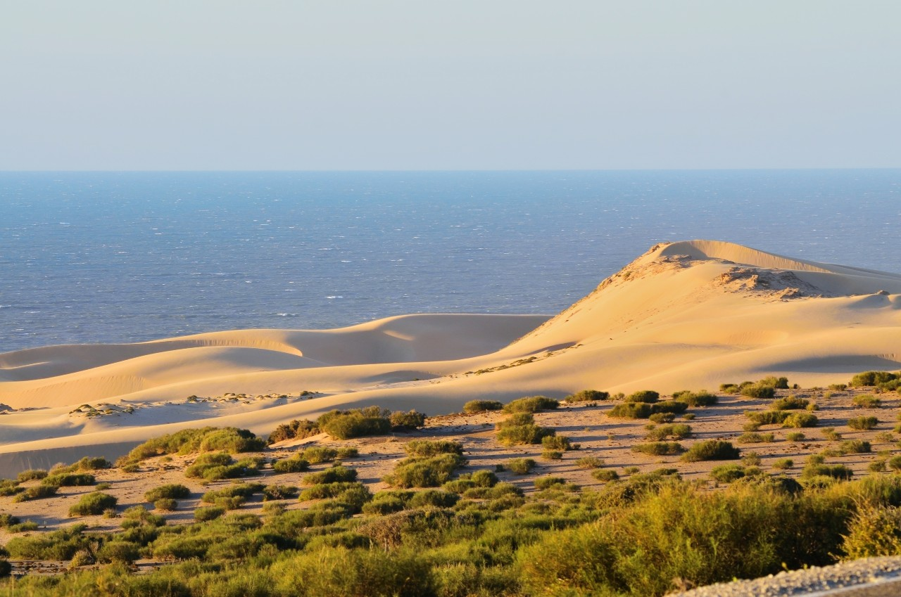 North of Agadir, Morocco on a rural country road you'll come upon their isolated dune catching the setting sun. It is geotagged if you want the specific location