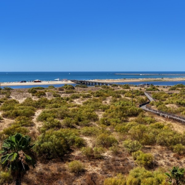 Occidental Isla Cristina Hotel In Huelva Barcelo Com